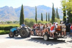 Tractor ride at Grande Provence Harvest Festival