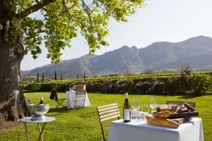 Grande Provence Picnic Landscape