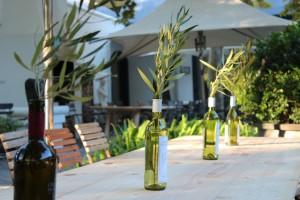 Grande Provence Harvest Day 1
