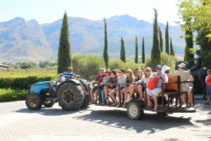 Tractor ride at Grande Provence Harvest Festival