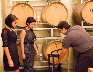 Wine blending at Grande Provence 2 hr