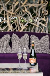 Sparkling Sauvignon Blanc HR