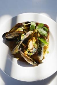 West Coast Mussels HR