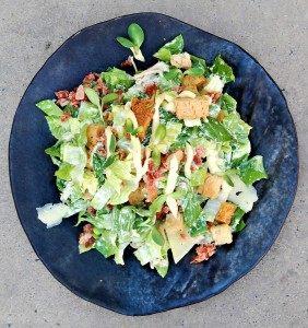 Chicken Ceasar salad HR