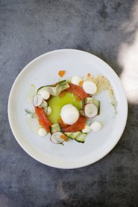 Gin cured Franschhoek trout, sweet and sour cucumber, dill creme, grapefruit shot from above LR