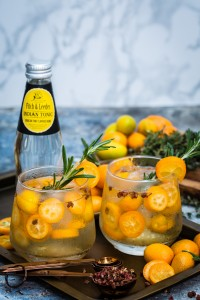 Fitch & Leedes Indian Tonic HR
