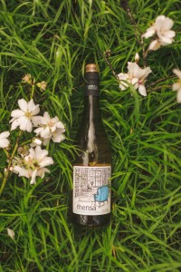 Mensa Chardonnay Pinot Noir spring shot LR