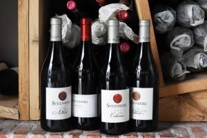 Steenberg auction wines landscape HR