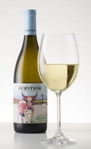 Survivor Sauv Blanc with glass LR