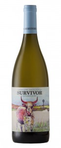 Survivor Sauvignon Blanc pack shot LR