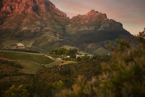 TOKARA landscape against the Simonsberg HR