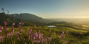 TOKARA landscape towards False Bay HR
